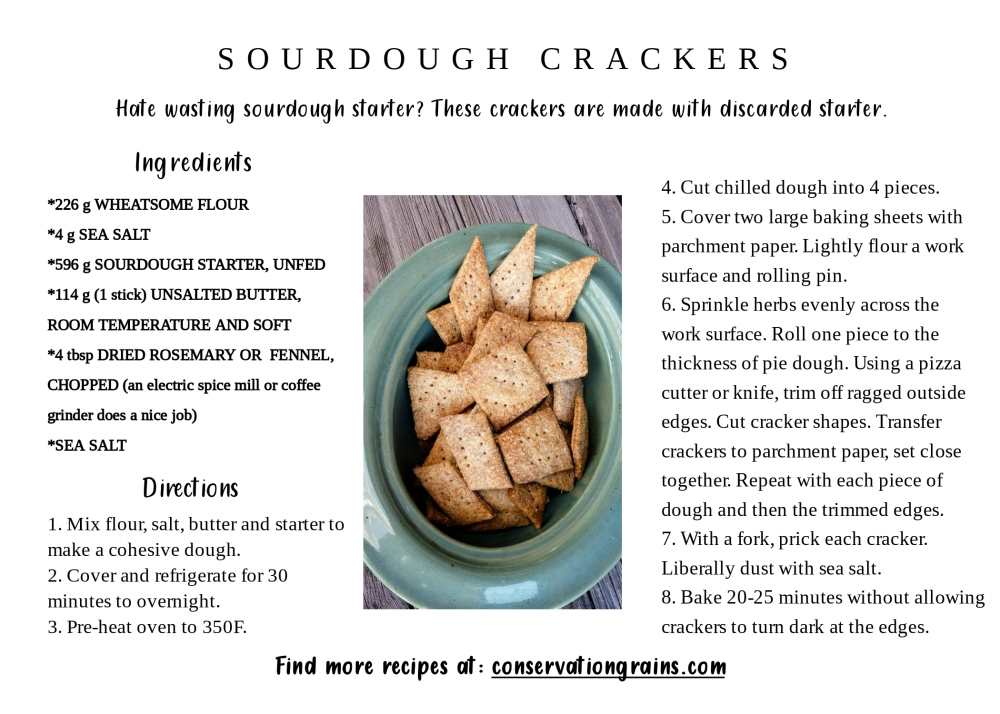Sourdough Crackers (template)